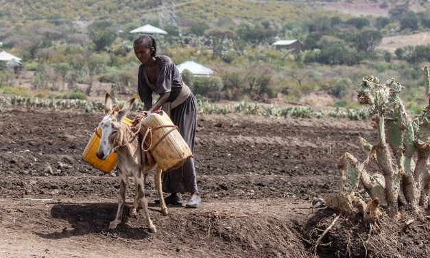 AFRICA. Amnesty: In Etiopia situazione fuori controllo